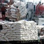 Lo DN 'xé rào' bán gạo giá thấp