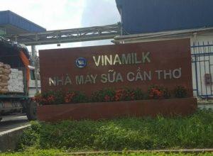Nhà máy sữa Cần Thơ – Công Ty Cp Sữa Việt Nam