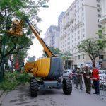 Hà Nội chi hàng tỷ đồng mua xe chuyên dụng cắt tỉa cây xanh