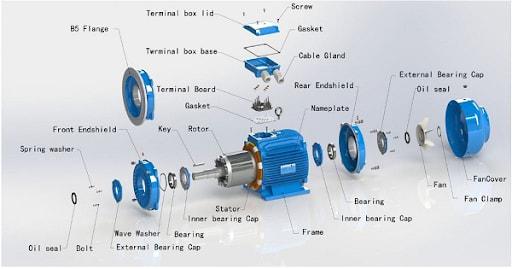 Chuyển động quay của rôto trong động cơ điện 3 pha sẽ được truyền ra ngoài